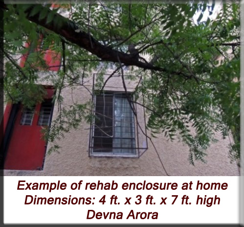 Devna Arora - Example of rehab enclosure at home