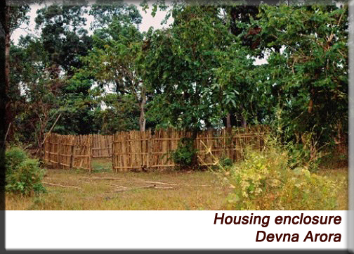 Devna Arora - Housing in a natural setting